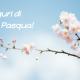 Il team Pedretti augura Buona Pasqua!
