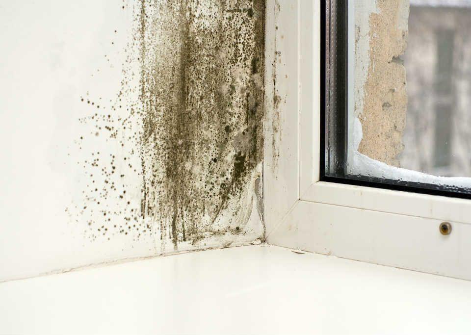 Finestre in PVC contro umidità e condensa superficiali
