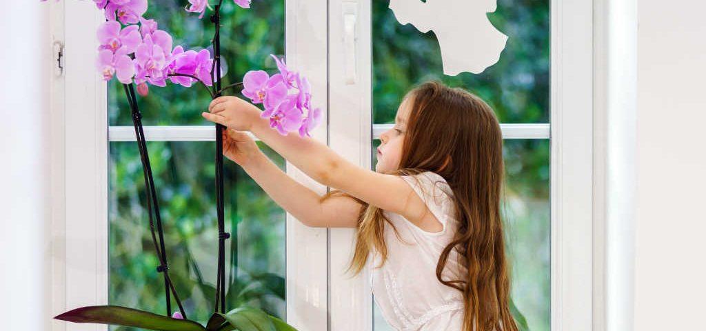 Investi nel futuro e scegli la durabilità dei serramenti in PVC